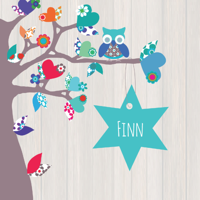 Geboortekaartjes - Hip geboortekaartje ster Finn