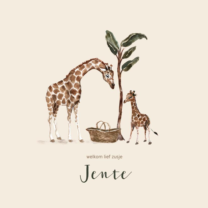 Geboortekaartjes - Jungle geboortekaartje giraffen tweede kindje