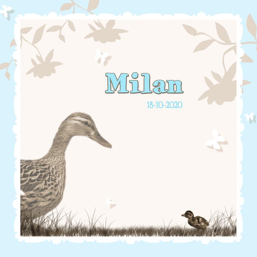 Geboortekaartjes - Kleine eend - blauw