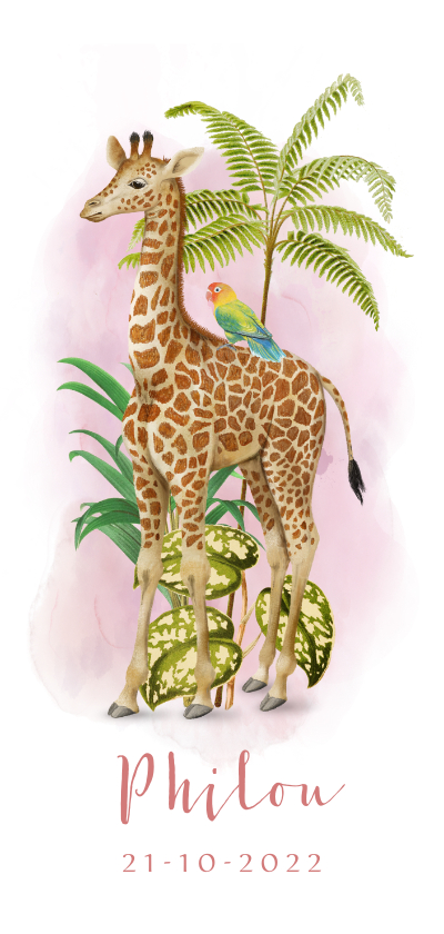 Geboortekaartjes - Langwerpig geboortekaartje giraffe met papegaait