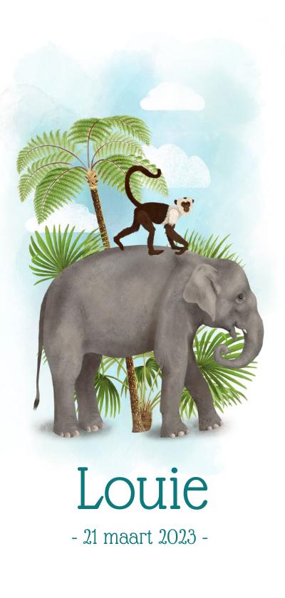 Geboortekaartjes - Langwerpig geboortekaartje olifant met aapje