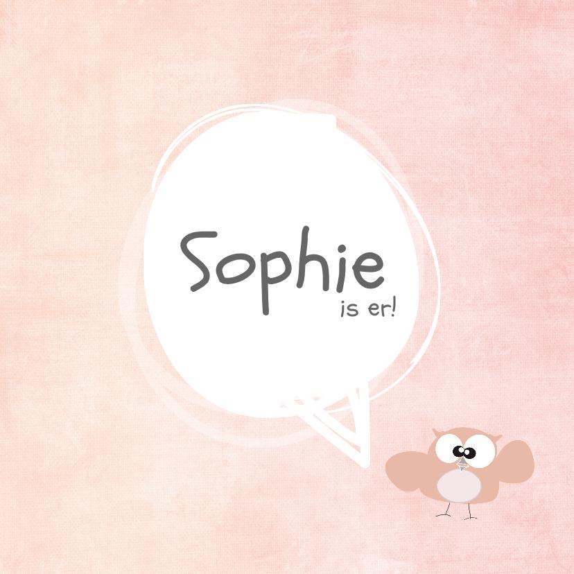 Geboortekaartjes - leuk geboortekaartje met lief uiltje en roze achtergrond