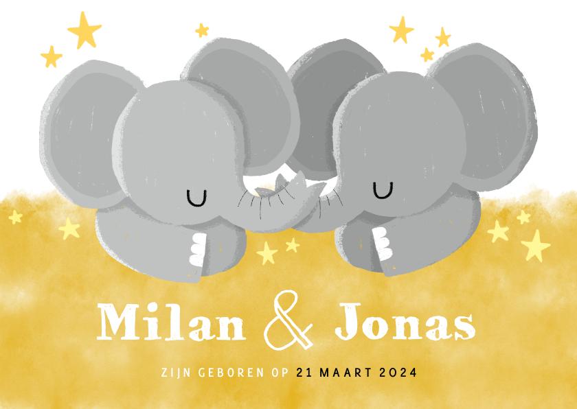 Geboortekaartjes - Lief geboortekaartje voor tweeling met olifantjes en sterren