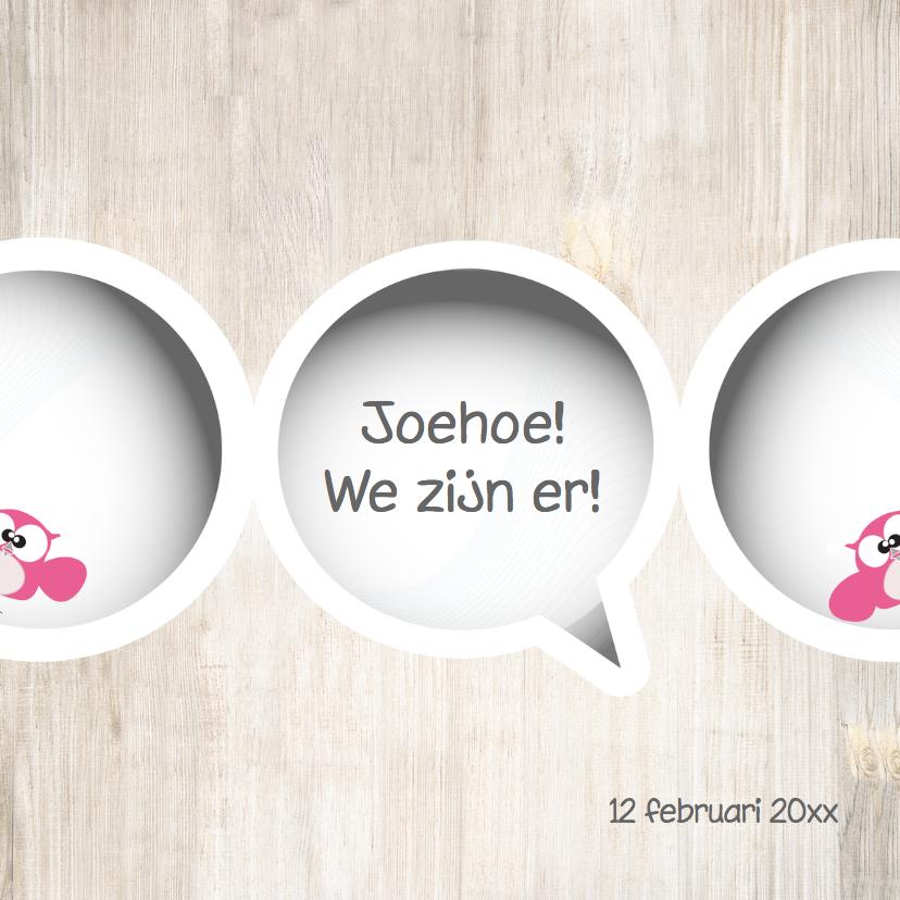 Geboortekaartjes - meisjes tweeling geboortekaart