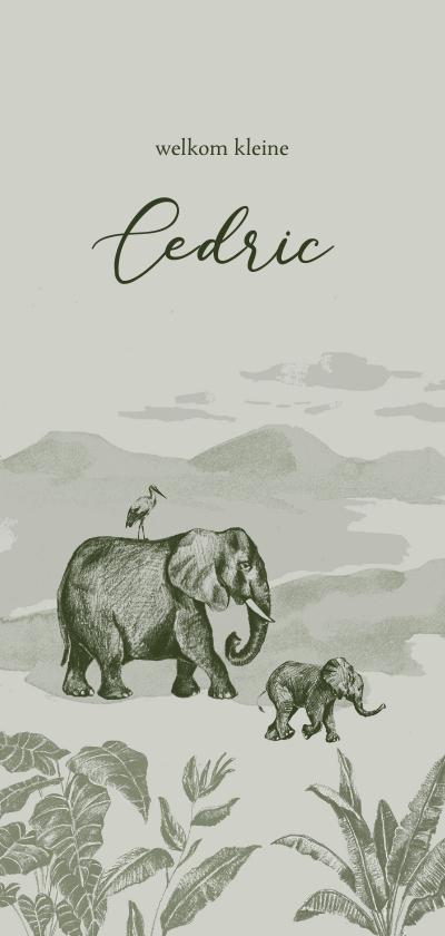 Geboortekaartjes - Olijfgroen jungle geboortekaartje met getekende olifanten