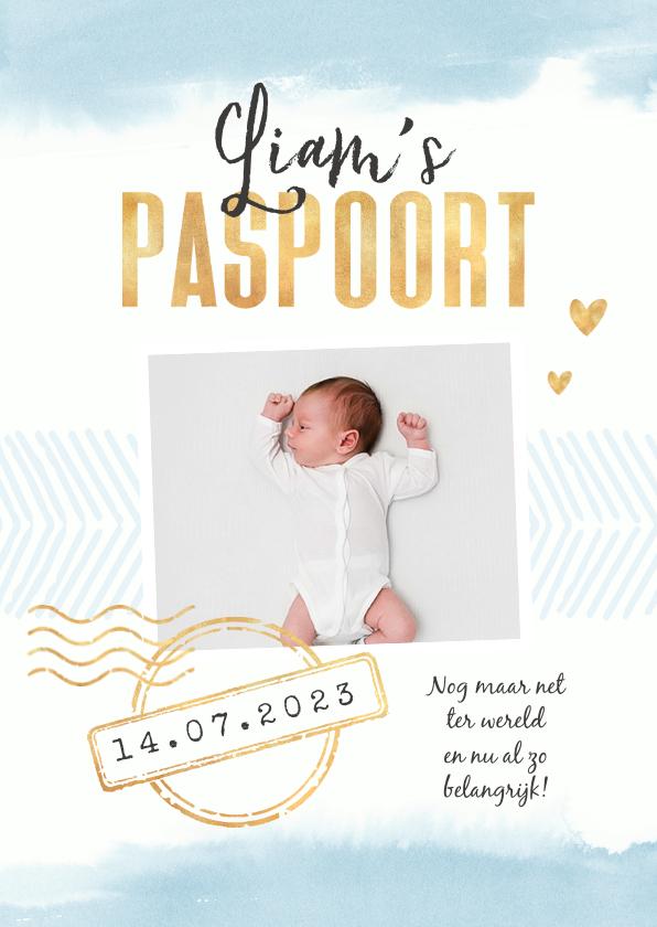 Geboortekaartjes - Paspoort geboortekaartje waterverf jongen stempels goud