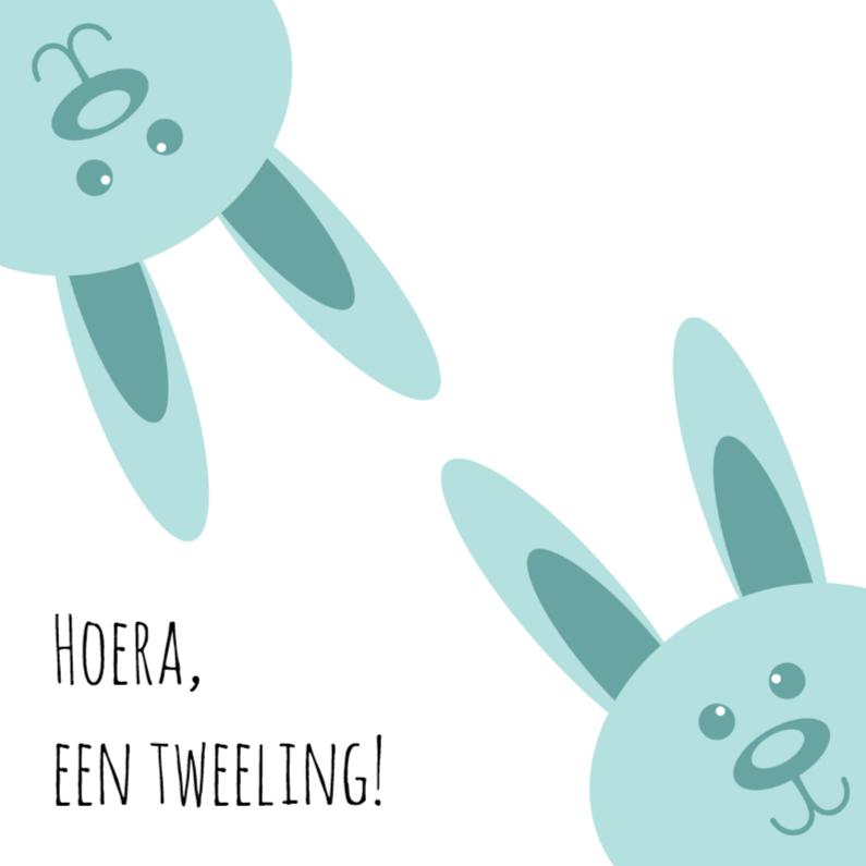 Geboortekaartjes - Twee blauwe konijnen - DH