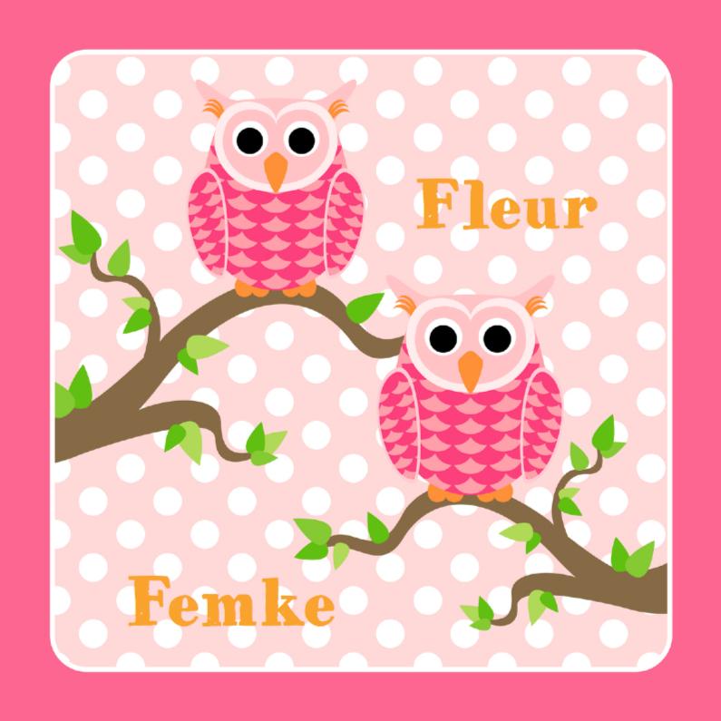 Geboortekaartjes - Tweeling geboortekaart Roze uiltjes