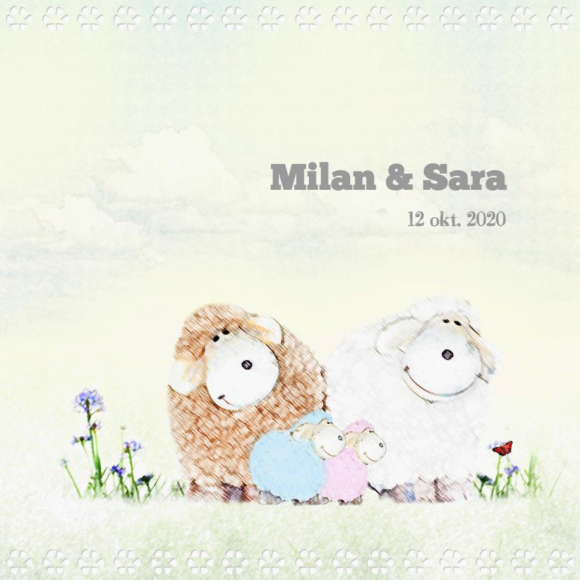 Geboortekaartjes - Tweeling meisje&jongen schaapjes