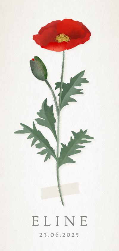 Geboortekaartjes - Vintage botanisch geboortekaartje met klaproos illustratie