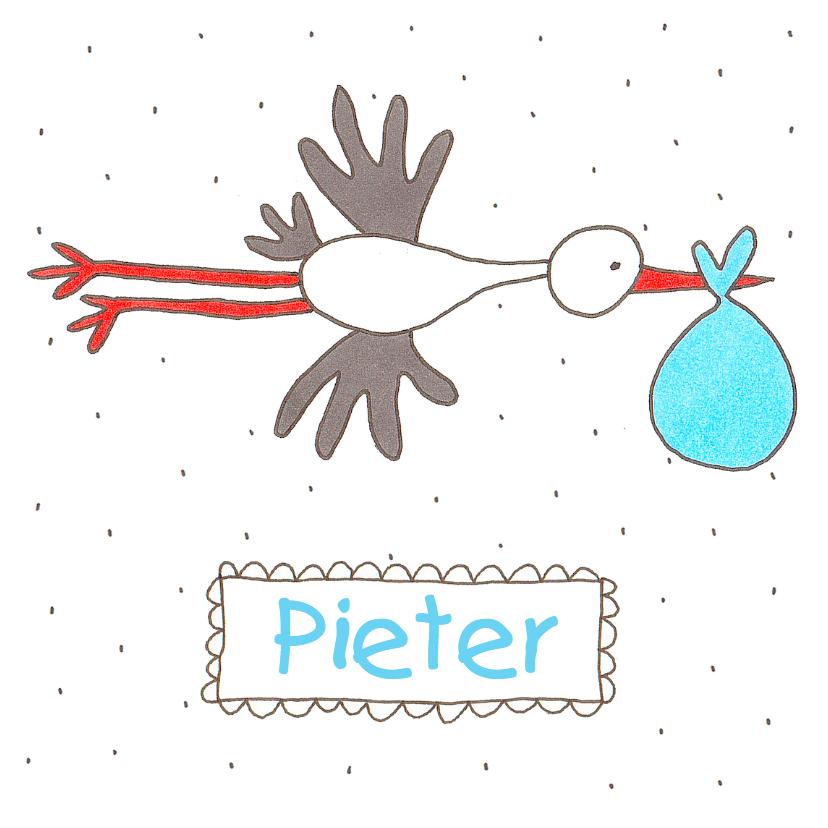Geboortekaartjes - Vliegende ooievaar jongen