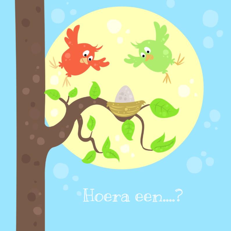 Geboortekaartjes - Vogeltjes met ei