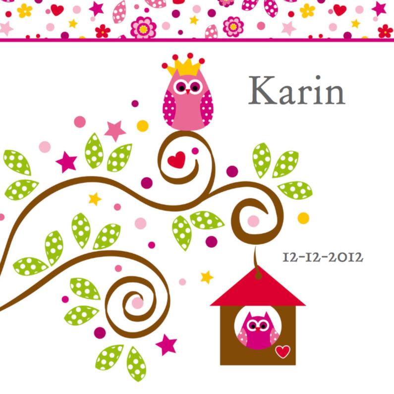 Geboortekaartjes - vrolijk geboortekaartje 16 uil en vogel
