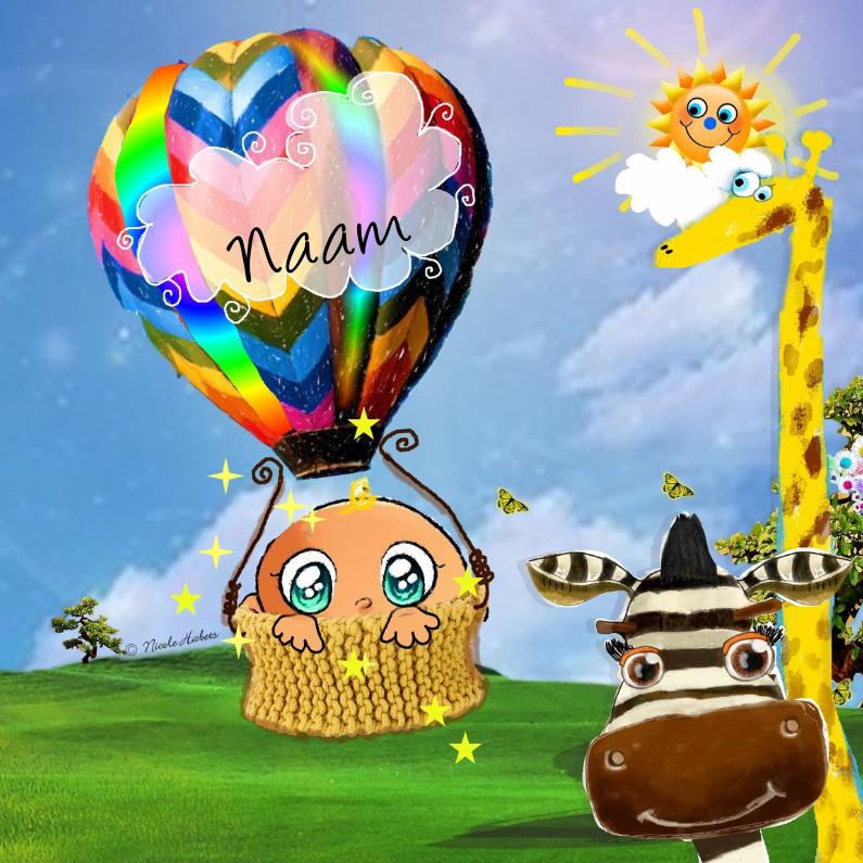 Geboortekaartjes - Vrolijke luchtballon