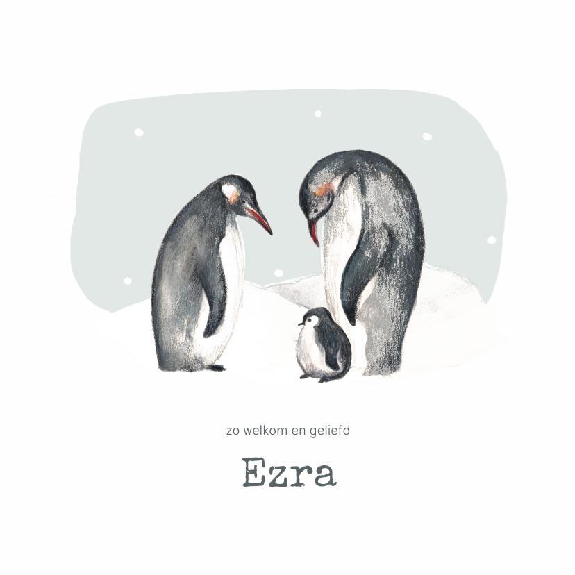 Geboortekaartjes - Winter geboortekaartje pinguins blauw met sneeuwvlokken