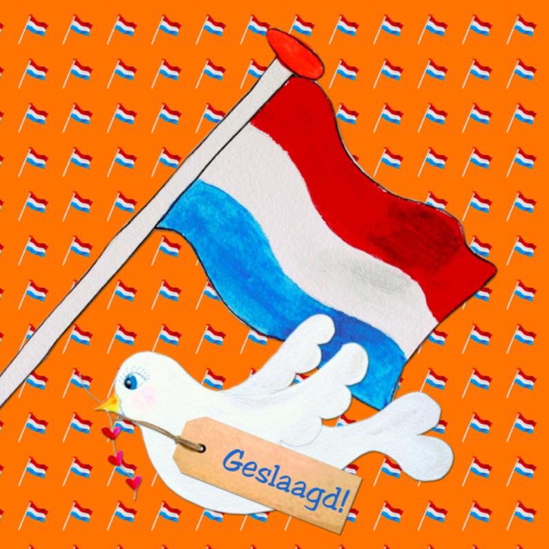 Geslaagd kaarten - Geslaagd kaart Holland PA