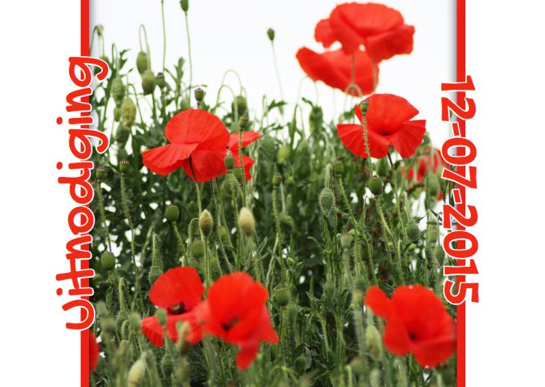Jubileumkaarten - Feest bloemen zelf invullen c