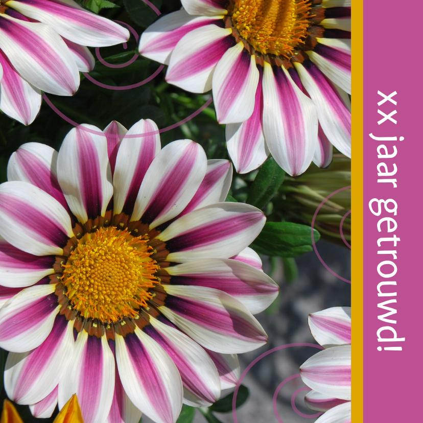 Jubileumkaarten - Prachtige fotokaart italiaanse bloem