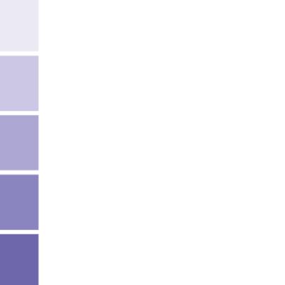 14210 Verhuisd verfstaal paars 2