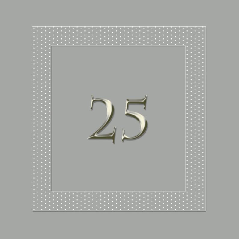 25 jaar in zilver 1
