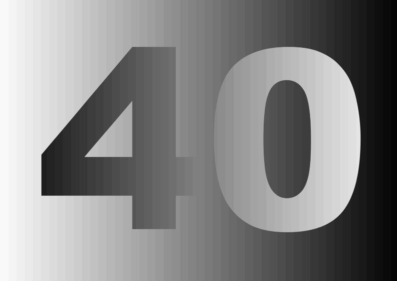 40 jaar in 50 tinten grijs 1