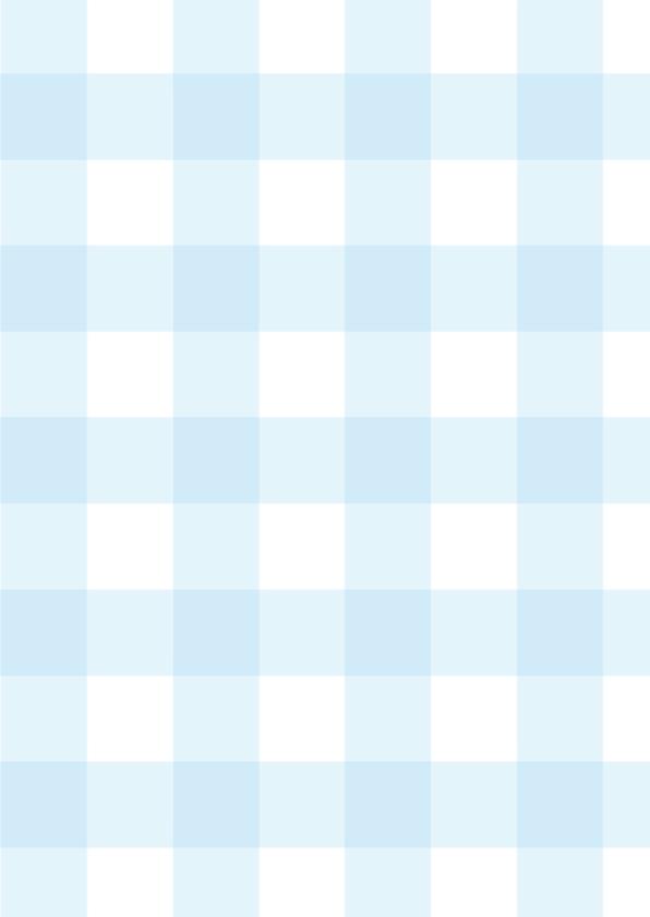 Babyfeestje Ster muisjes blauw 2