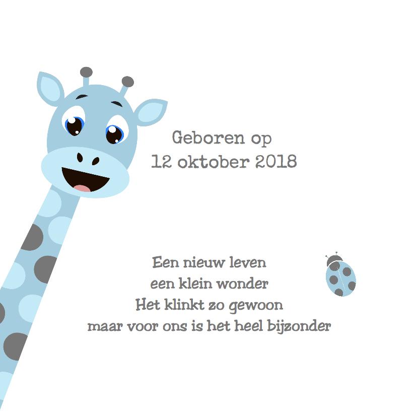 babykaartje Giraf Jongen - LOVZ 2