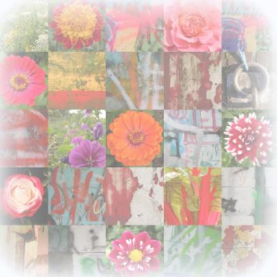 Beterschap Happy Flowers IW  2
