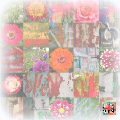 Beterschap Happy Flowers IW  3