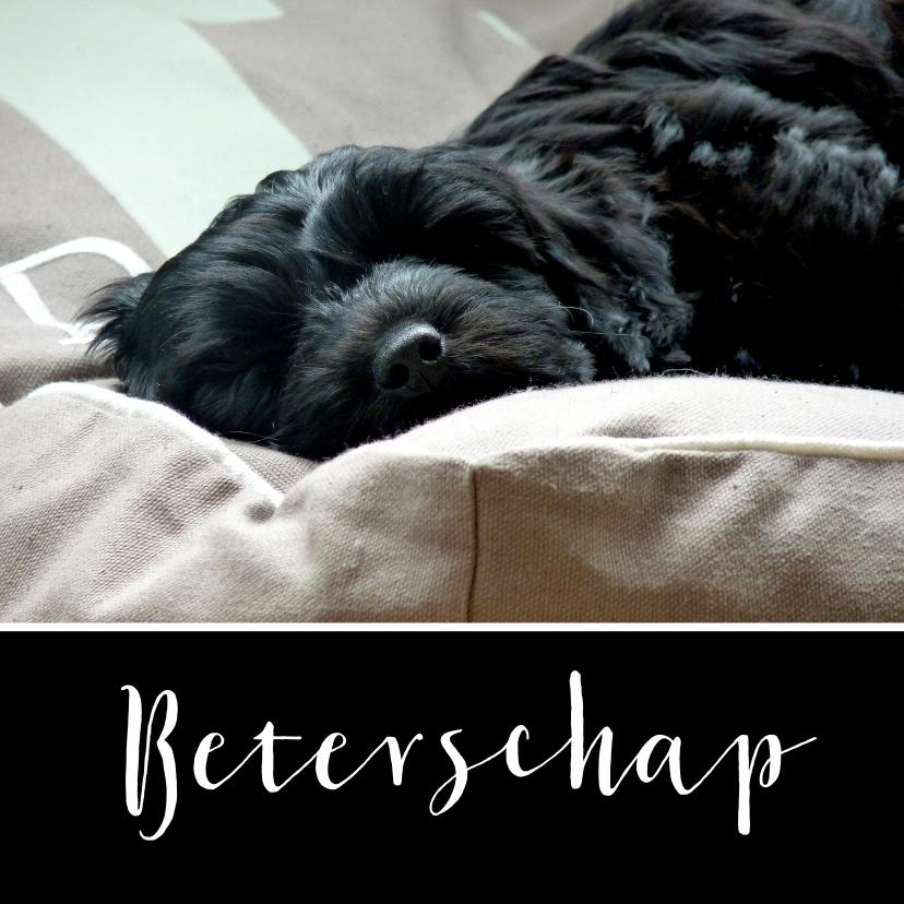 Beterschapskaart slapende hond 1