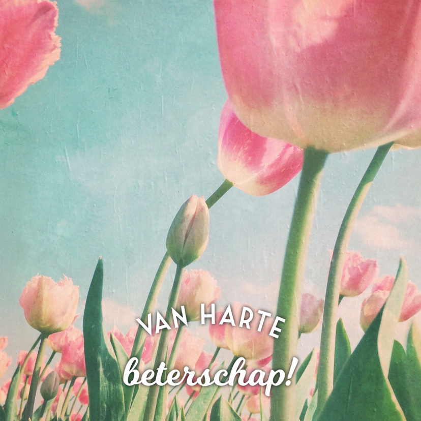 beterschapskaart tulpen - LB 1
