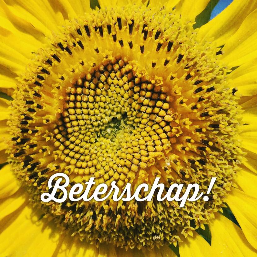 beterschapskaart zonnebloem - LB 1