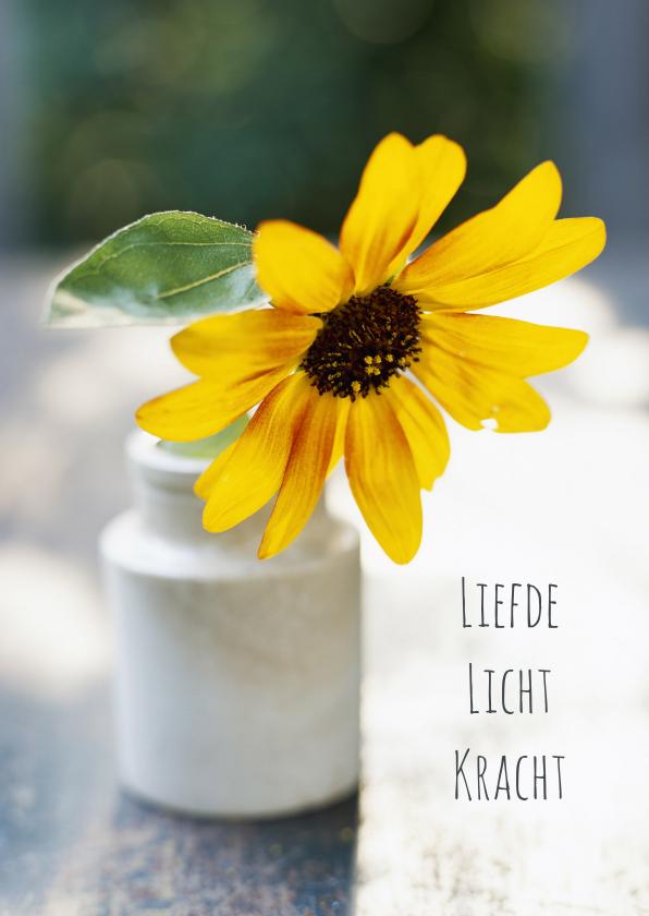 Bloem liefde licht-isf 1