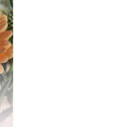 Bloemen feest  2