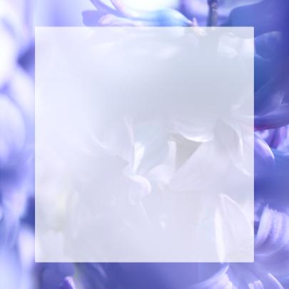 Bloemen veel liefs 3
