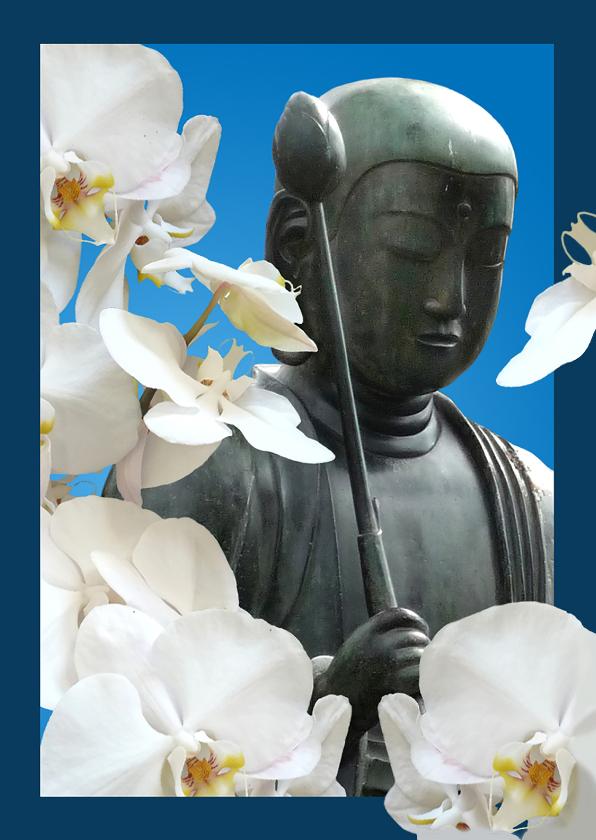 Coaching orchidee Boeddha 1