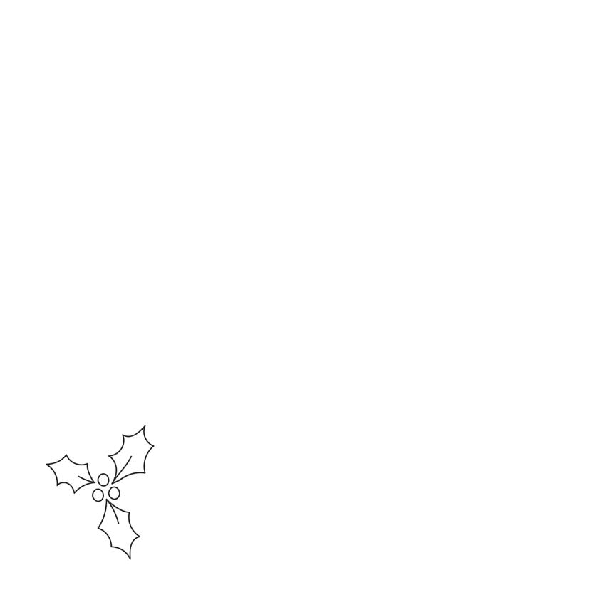 Dieren Kerstkaart - Uil - Owl 2
