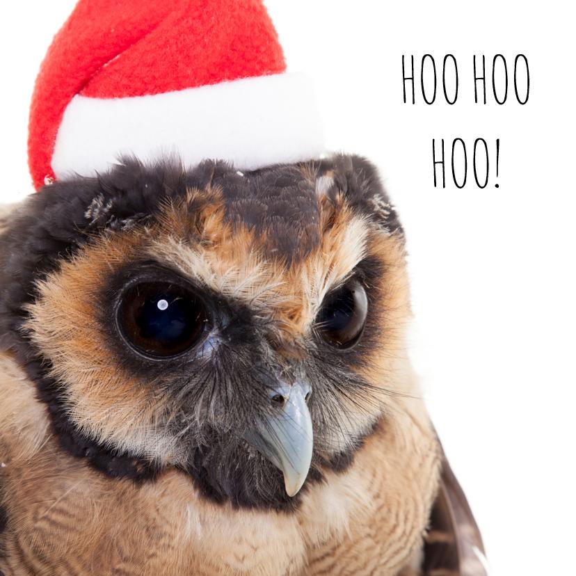 Dieren Kerstkaart - Uil - Santa 1