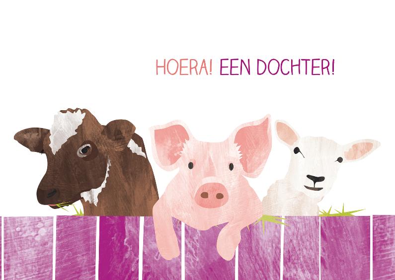 Een dochter met koe varken en schaap 1