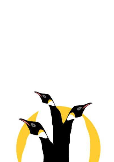 Er is er een jarig - pinguins 2