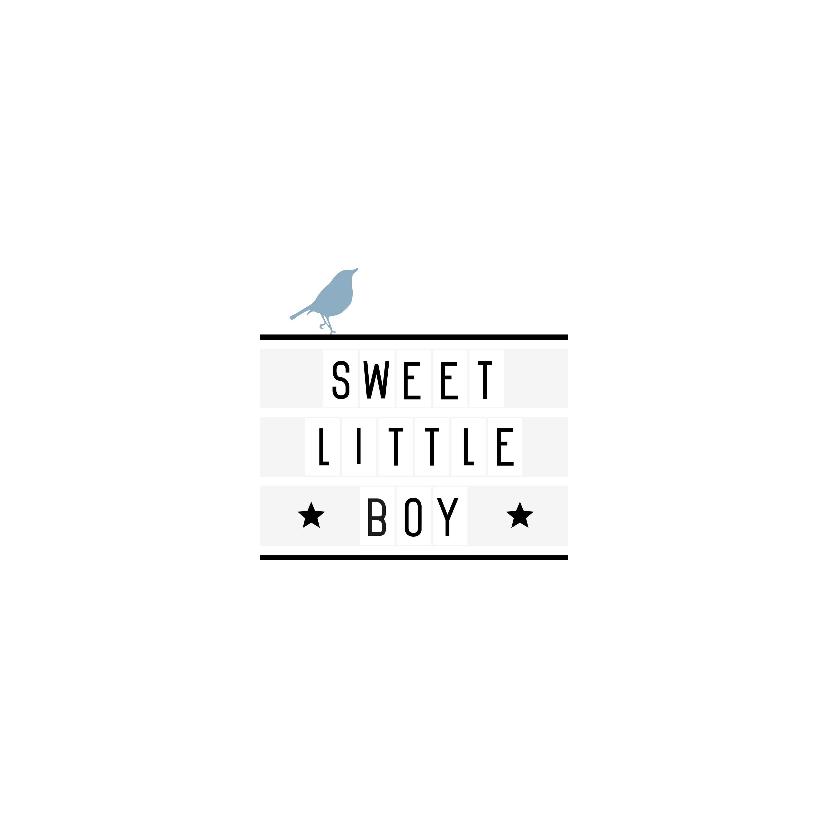 Felicitatie-Lightbox, boy, vogel 2