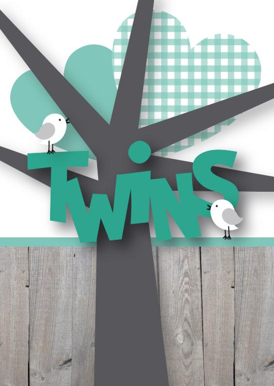 Felicitatie tweeling birds 1