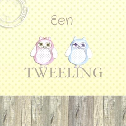 Felicitatie tweeling uil 2