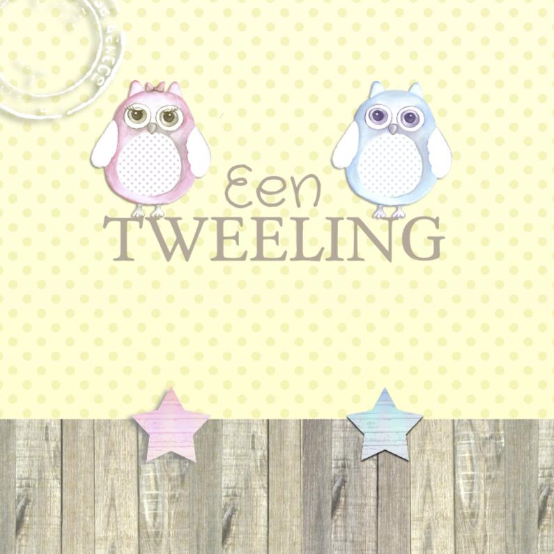 Felicitatie tweeling uil 1