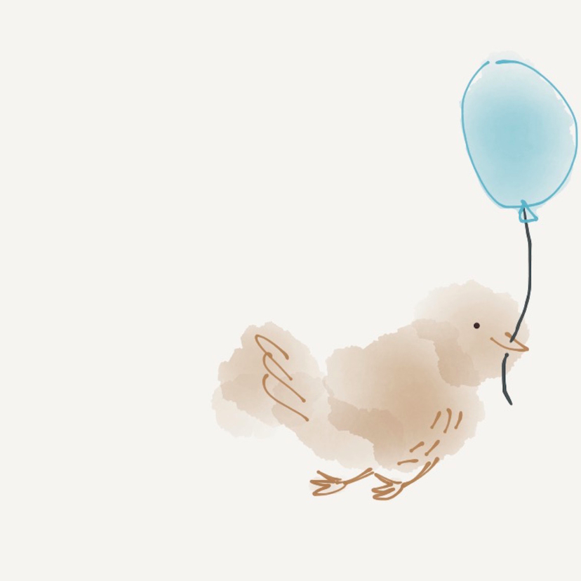 Felicitatie Vogeltje 2