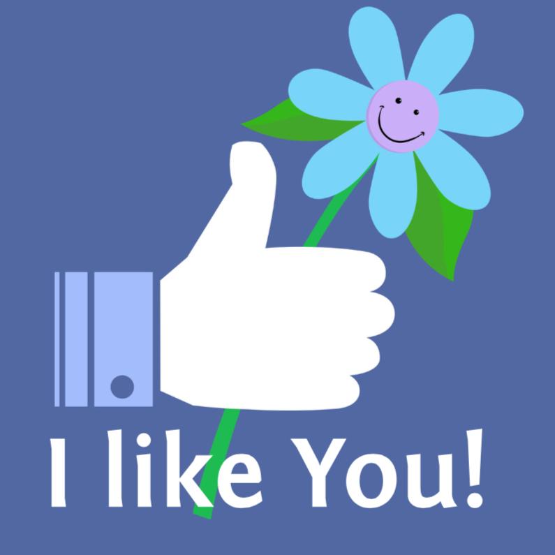 Felicitatiekaart I like You! 1