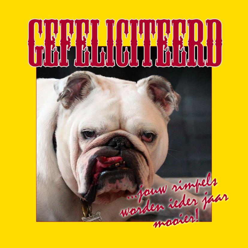 Felicitatiekaart met rimpelige bulldog 1
