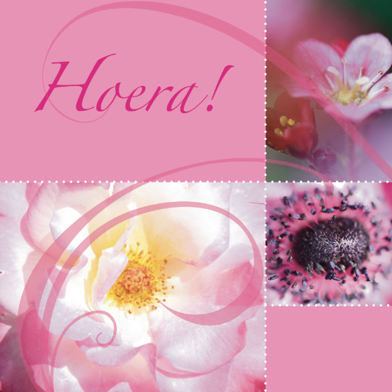 felicitatiekaart met roze bloemen 1