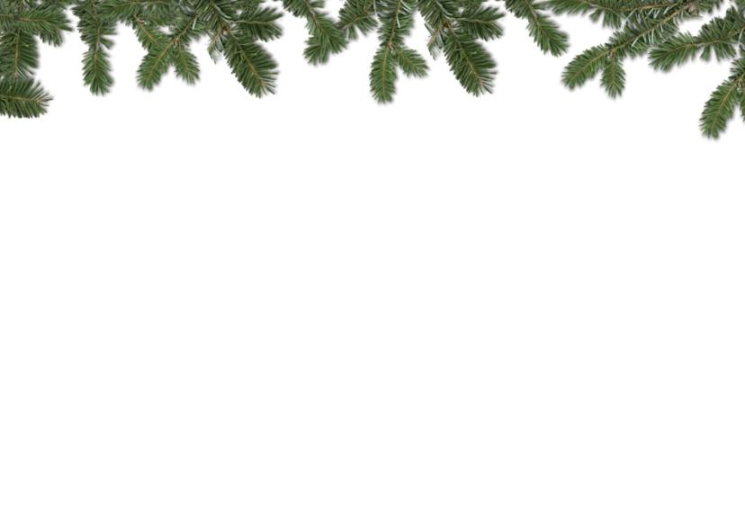 Fijne feestdagen koekletters - kerstboom 2