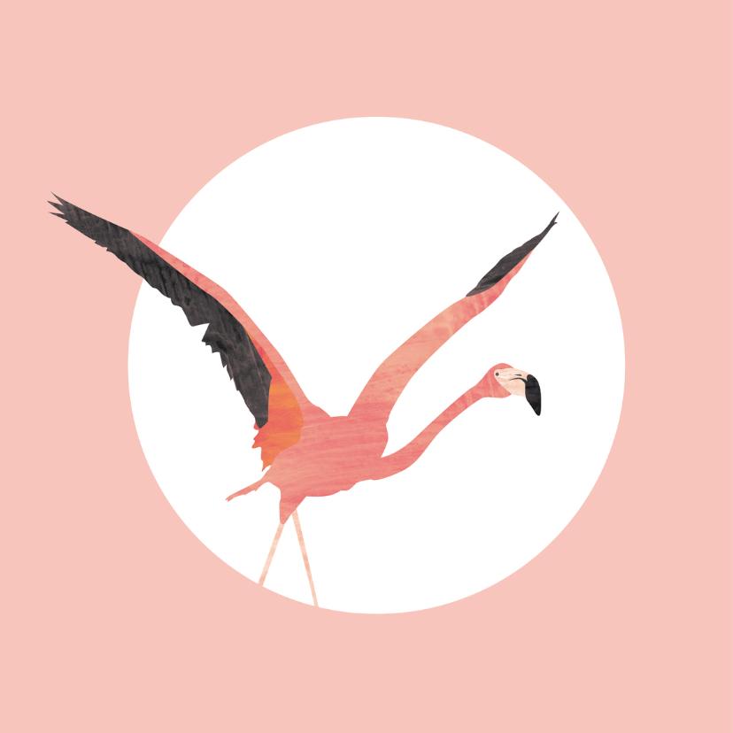 Flamingo geboortekaartje 2